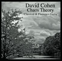 david cohen guitar chaos theory